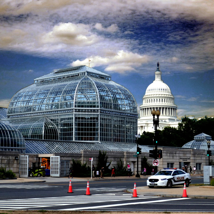 Washington, D.C. USA, Creative Commons license Attribution-ShareAlike 2.0 Generic